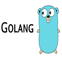 Golang or Go Programming FREELANCER