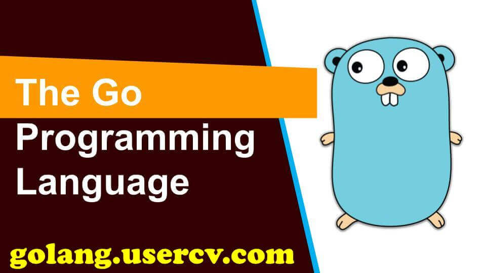 I Will Do Your Golang Project, Script Or Fix Errors