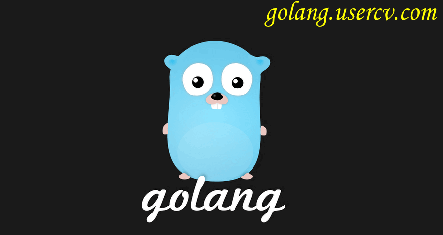 I Will Code Or Fix The Program In Golang , Go Programming Language