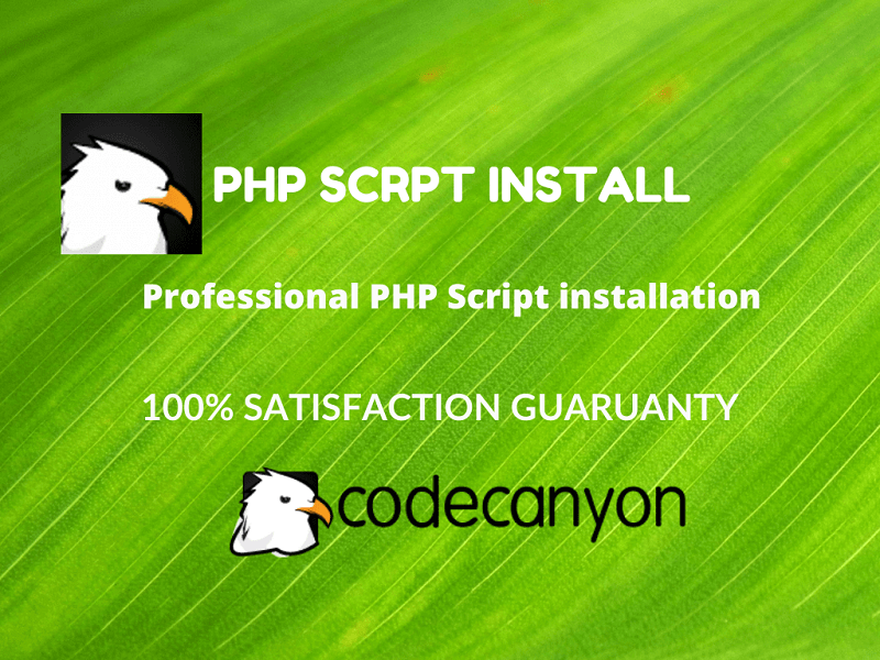 Install and setup any codecanyon PHP script on your server