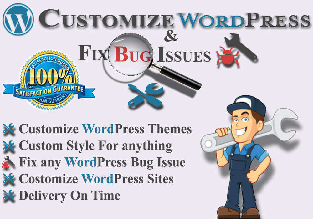 I will do Wordpress Website development and Customization for you