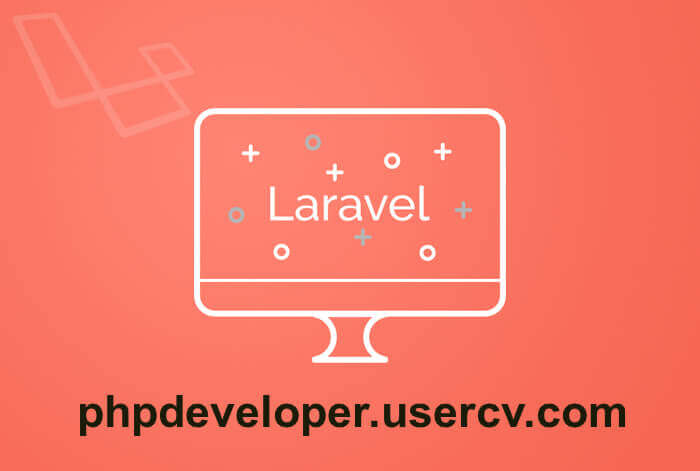 I Will Fix And Develop Dynamic PHP Laravel Websites